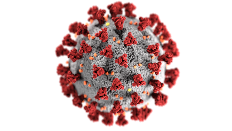 Picture of the Corona virus.
