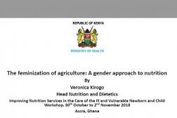 Photo: 06 Veronica Kirogo_Cross Cutting Issue Panel_The Feminization of Agriculture_INS Workshop_11.1.2018